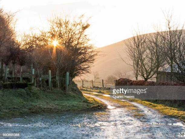 Early morning by the Ty'n Cornel hostel, Ceredigion. The Cambrian Way, Wales, UK