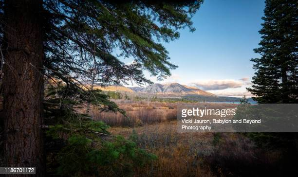 early morning dramatic landscape at s. lake tahoe, california - extreme terrain stock pictures, royalty-free photos & images