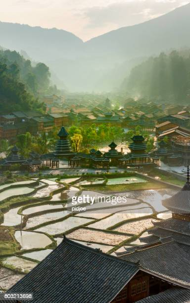 early morning , entrance village zhao xing, rain and wind bridge. this image is gps tagged - paddy field stock pictures, royalty-free photos & images