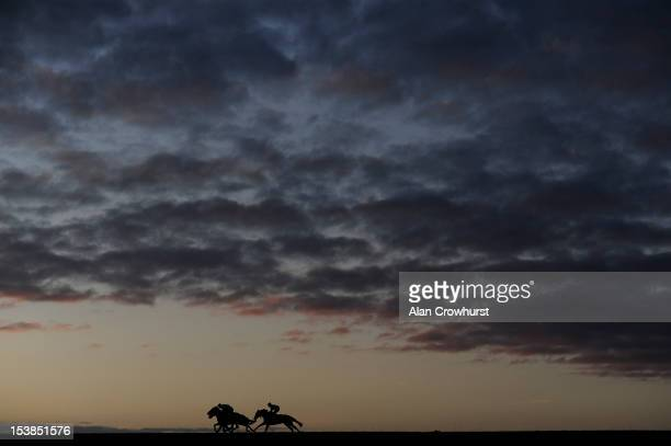 Early morning exercise on racecourse side gallops at Newmarket racecourse on October 10 2012 in Newmarket England