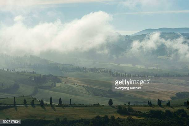 Early morning fog in the Val d'Orcia near Pienza in Tuscany, Italy with Italian cypress trees .