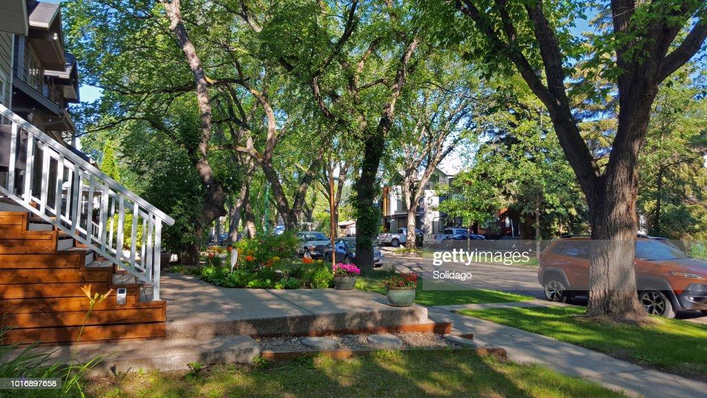 Early Morning In An Old Restored Treelined Neighborhood : Stock Photo