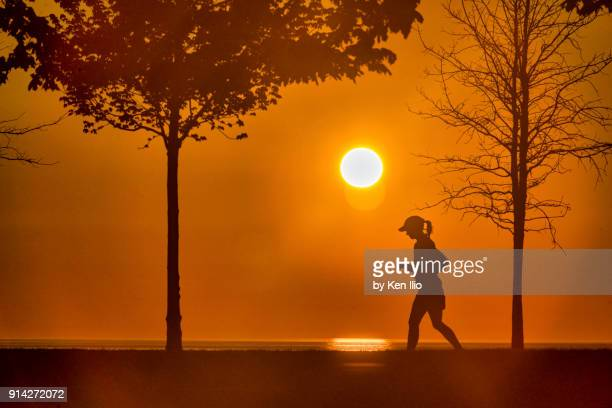early morning jogger on the lakefront - ken ilio stock photos and pictures