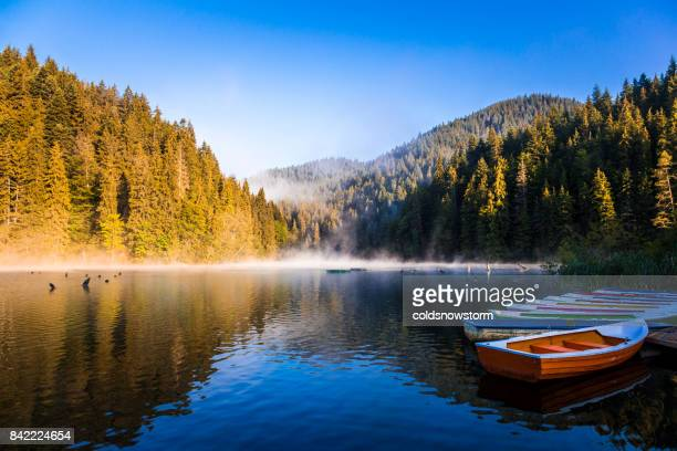 early morning lake with mist, forest and rowing boats in a row - transylvania stock pictures, royalty-free photos & images