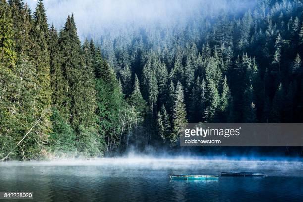 早朝湖霧、森、手漕ぎボート - ルーマニア ストックフォトと画像