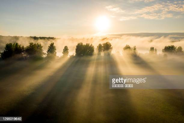 early morning landscape. foggy river. river valley in the morning fog at sunrise. view from above. rays of the sun breaking through the fog in over the trees - khaki green stock pictures, royalty-free photos & images