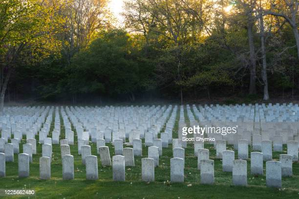 early morning light in a military cemetery - world war i stock pictures, royalty-free photos & images