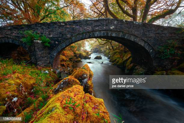 early morning, lledr bridge, betws-y-coed, snowdonia, wales - riverbank stock pictures, royalty-free photos & images