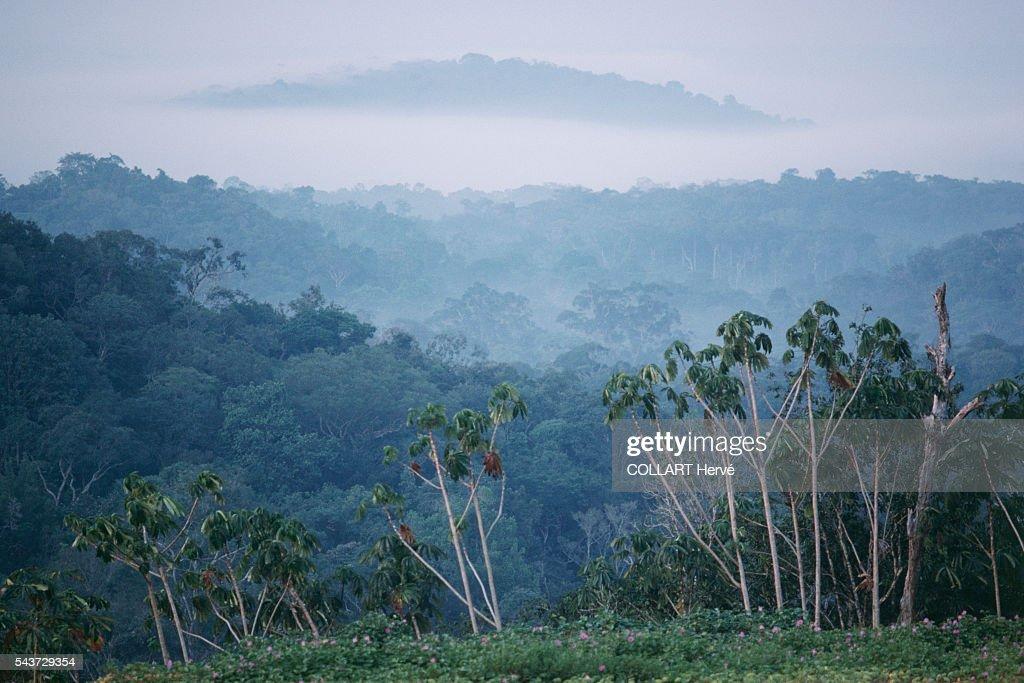 Amazon Basin - The Last Frontier : News Photo