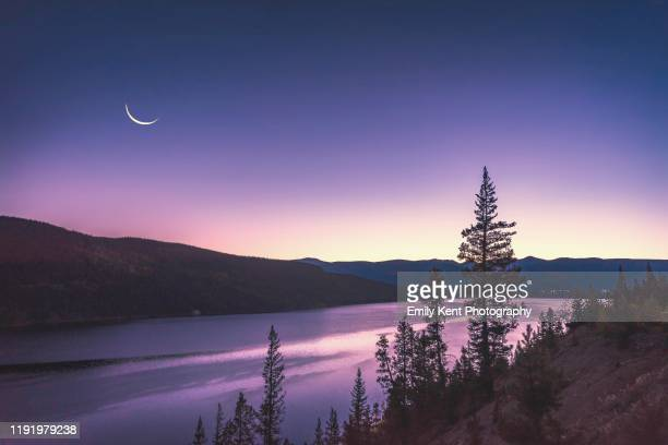 early morning moon - pink moon stock pictures, royalty-free photos & images
