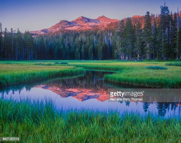 early morning on wrights lake, near lake tahoe, california - national forest stock pictures, royalty-free photos & images