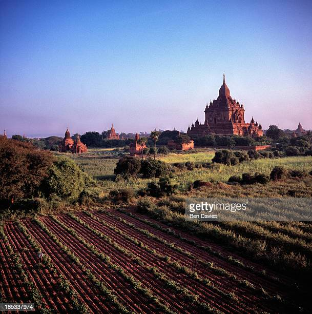 Early morning panoramic views over the great ancient temples of Bagan one of the major tourist attractions in Myanmar In all there are more than 2000...