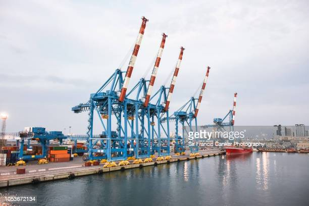 early morning rise in genoa port with five huge erected cranes in liguria, italy - darsena foto e immagini stock