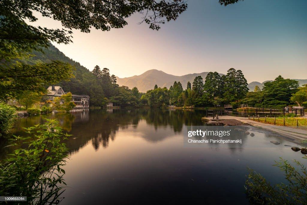 Early morning scene of Kinrinko (Kinrin Lake) in Yufuin, Japan : ストックフォト