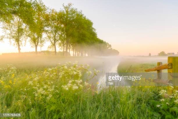 early morning sunrise during a beautiful springtime day over the zwartendijk near kampen - morning stock pictures, royalty-free photos & images