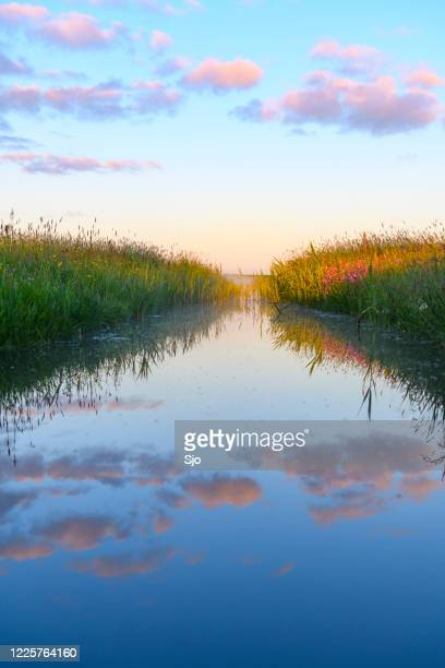 early morning sunrise over a creek during a beautiful springtime day over the zwartendijk near kampen - overijssel stock pictures, royalty-free photos & images
