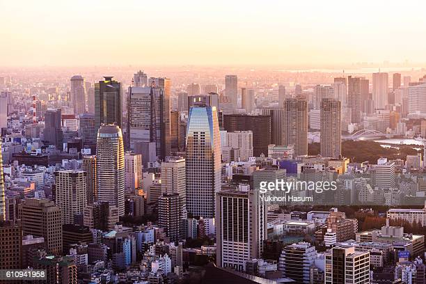 Early morning Tokyo Skyline
