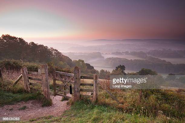 Early morning view from the edge of Ranmore Common in Surrey Hills Area of Outstanding Natural Beauty on the North Downs looking south towards Wotton...
