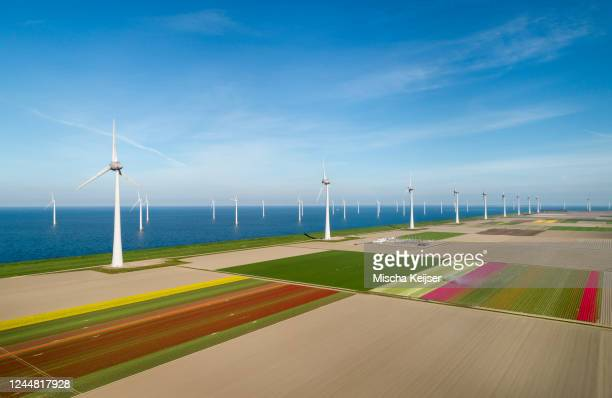 early morning view of wind turbines and spring fields in coastal area of the netherlands. - 干拓地 ストックフォトと画像