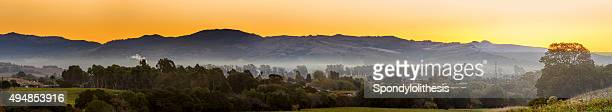 Early Morning Vineyard and town in Napa Valley California