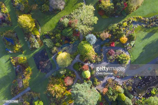 Early morning visitors to RHS Harlow Carr in Harrogate take in the stunning Autumn colours in the North Yorkshire Garden on October 17 2019 in...