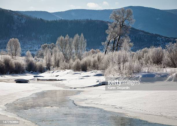 early morning, yampa river, steamboat springs - steamboat springs colorado stock photos and pictures