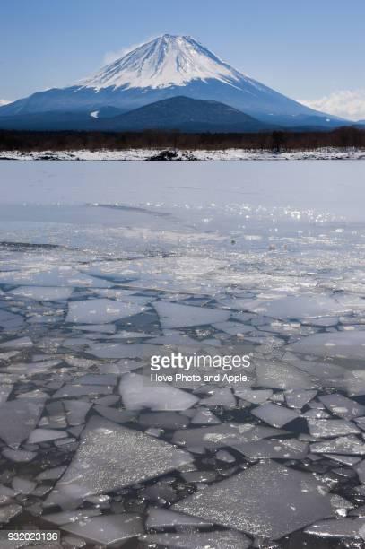 Early Spring Fuji at Lake Shoji