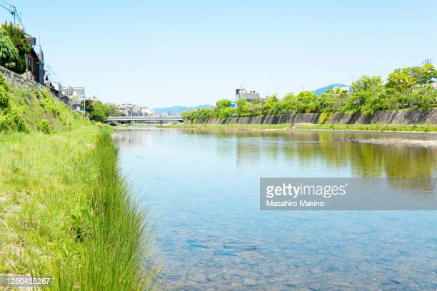 early summer view of kamo river, kyoto city - 夏休み ストックフォトと画像
