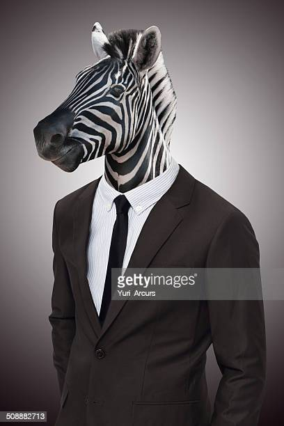 earn your stripes in the corporate jungle - zebra stock pictures, royalty-free photos & images