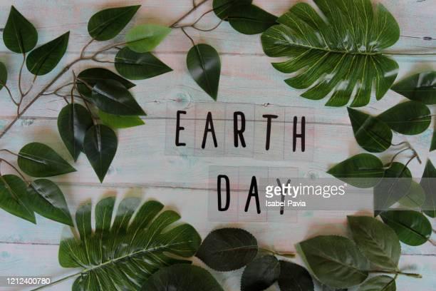 earth day flat lay - earth day foto e immagini stock