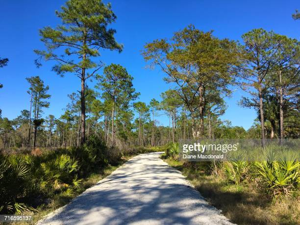 earth day - palmetto florida stock pictures, royalty-free photos & images