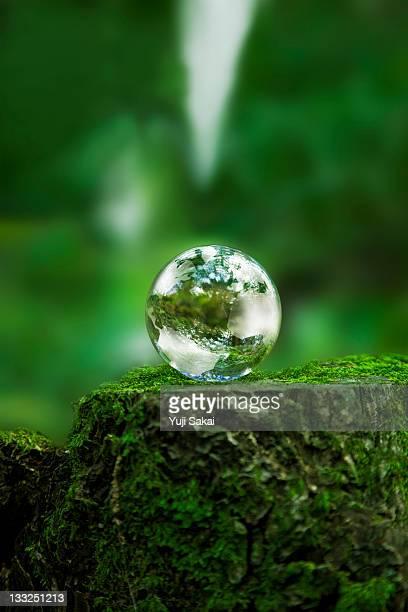 earth globe on moss