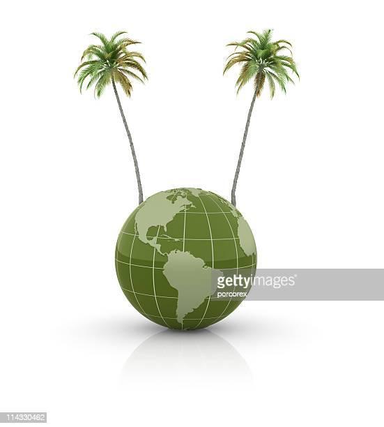 Terre Globe avec palmiers