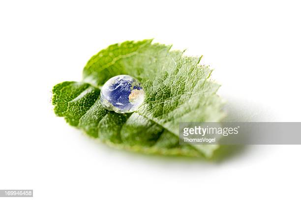 Earth On Green Leaf - Nature Water Environment Bizarre