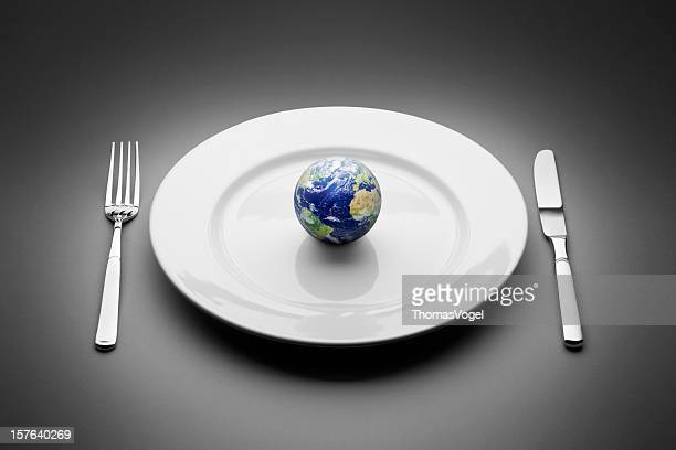 Earth served on plate. Food Globe Planet World Restaurant