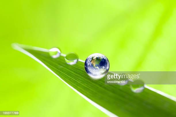 アース waterdrop にリーフグリーン、エコロジーのコンセプト