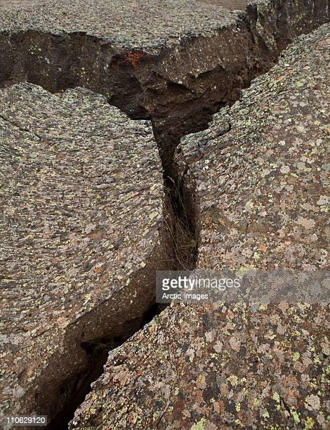 Earthquake cracks in lava, lichen on top