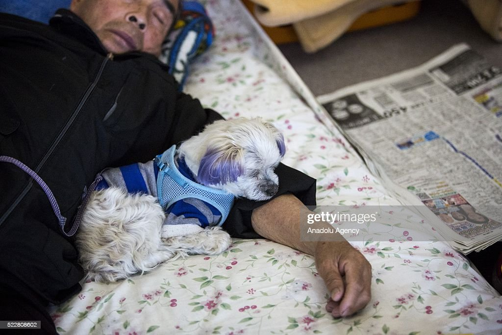 Earthquake survivor takes rest with his pet in the morning at Mashiki Gymnasium Evacuation Center in Kumamoto, Japan on April 21, 2016 . To date 45 people are confirmed dead and around 11,000 people have evacuated after an 6.5 earthquake on Thursday night and a stronger 7.3 quake on Saturday morning struck the Kyushu Island in Western Japan.