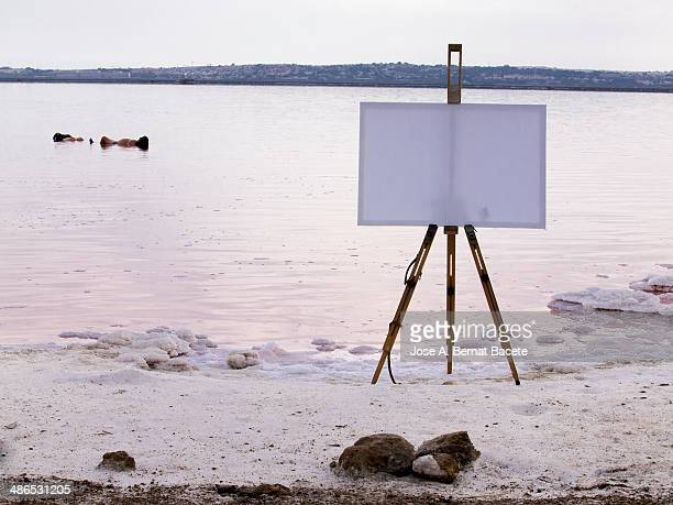 Easel with white canvas on a landscape water