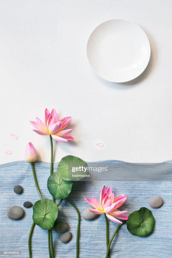 East Asian Lotus Flower Still Life Image Stock Photo Getty Images