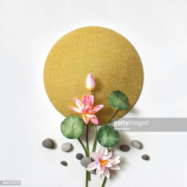 east asian tea break still life image. - fiore di loto foto e immagini stock