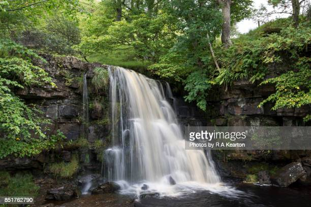 east gill force, keld, swaledale, north yorkshire, england - waterfall stock pictures, royalty-free photos & images