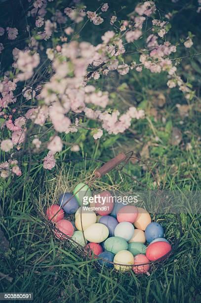 Easter basket in garden