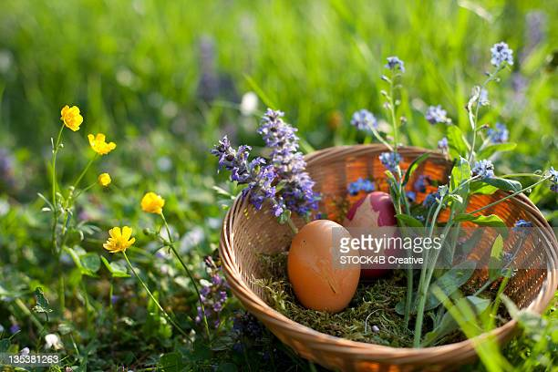 Easter basket in meadow