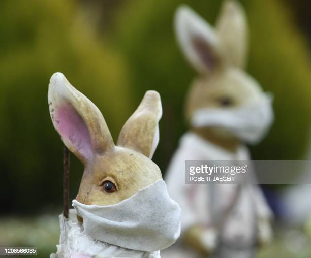 Easter bunnies decorated with face masks stand on a traffic circle in Deutsckkreutz Austria on March 30 amid the novel coronavirus COVID19 pandemic...