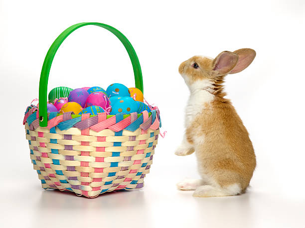 Easter Bunny And Basket Of Coloured Eggs Wall Art