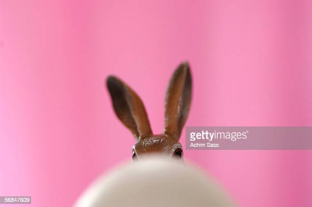 easter bunny and egg - osterhase stock-fotos und bilder