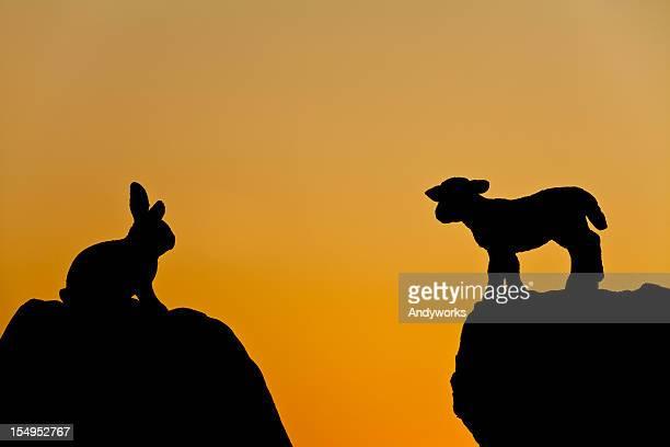 osterhase und lamm-silhouette - osterlamm stock-fotos und bilder