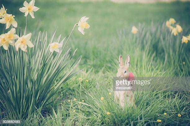 easter bunny in garden - easter bunny stock pictures, royalty-free photos & images
