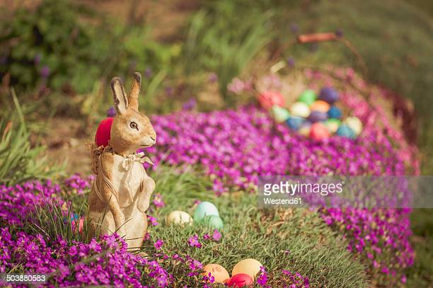 Easter bunny in garden with flowers